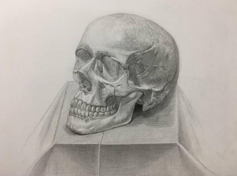 鉛筆で描かれた頭がい骨の石膏像です。丁寧な仕事を重ねて、端正なデッサンとして仕上がっています。